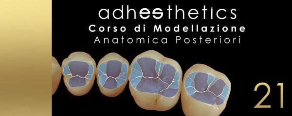 modellazione anatomica posteriori
